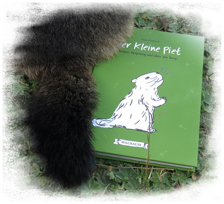 Piet Po